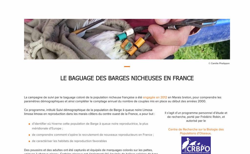 Barges A Queue Noire 2 Creation Site Web Nature
