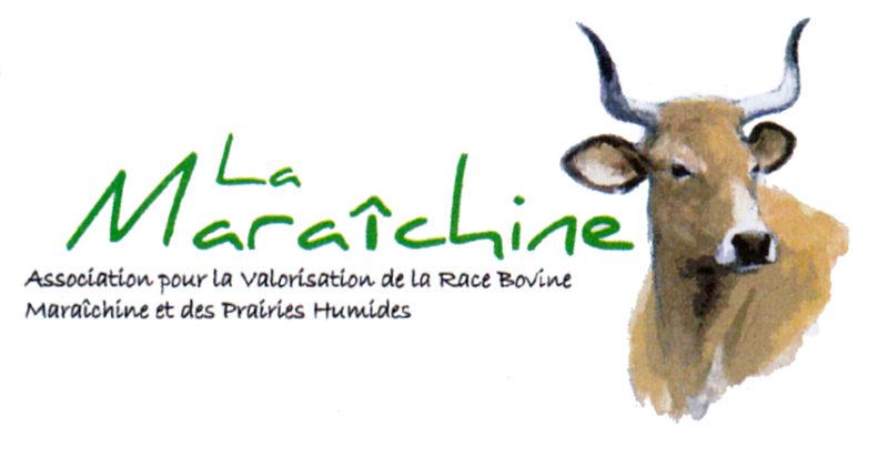 Logo Maraichine Web 1