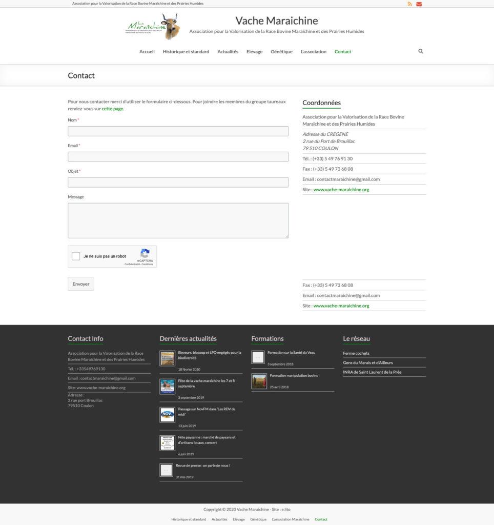 Vache Maraichine 5 Creation Site WordPress